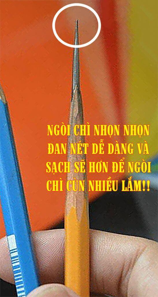 CHÌ NHỌN
