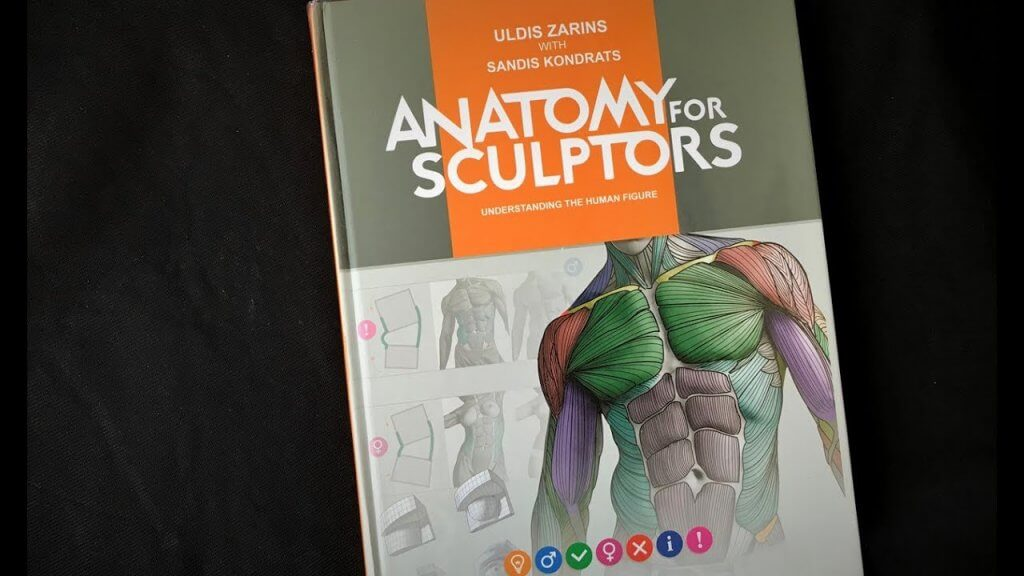 Anatomy For Sculptors - Giải phẫu cho điêu khắc